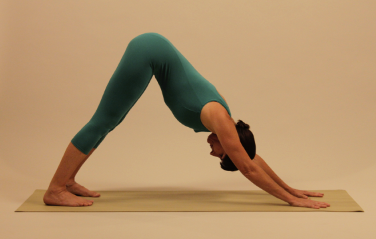 yoga for healthy hands and wrists  garden of yoga